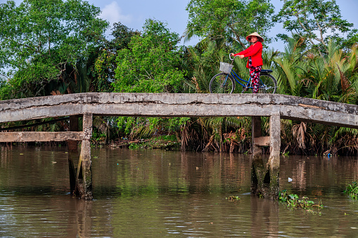 Vietnamese woman riding a bicycle, Mekong River Delta, Vietnam