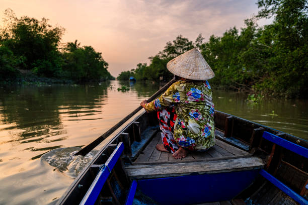 vietnamese woman rowing a boat, mekong river delta, vietnam - mekong river stock pictures, royalty-free photos & images