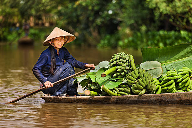 Vietnamese woman rowing  boat in the Mekong River Delta, Vietnam  vietnamese ethnicity stock pictures, royalty-free photos & images