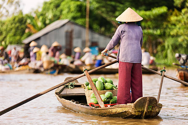 vietnamese woman rowing  boat in the mekong river delta, vietnam - mekong river stock pictures, royalty-free photos & images