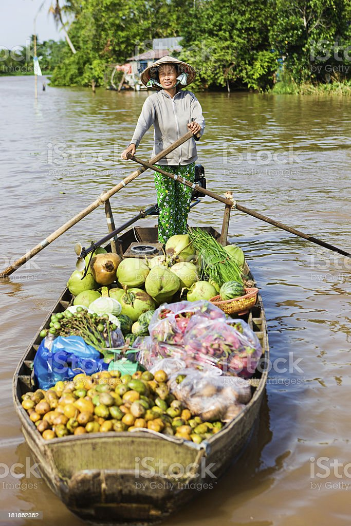 Vietnamese woman rowing  boat in the Mekong River Delta, Vietnam royalty-free stock photo