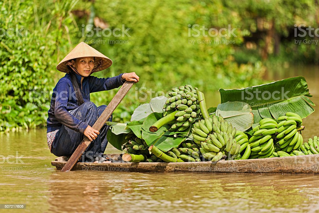 Vietnamese woman rowing  boat in the Mekong River Delta, Vietnam stock photo