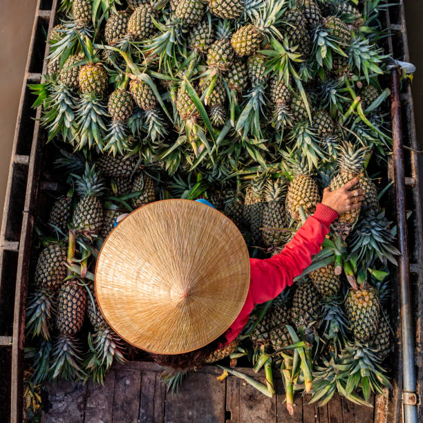 vietnamese woman selling pineapples on floating market, mekong river delta, vietnam - mekong river stock pictures, royalty-free photos & images