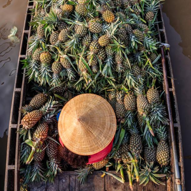 Vietnamese woman selling pineapples on floating market, Mekong River Delta, Vietnam stock photo