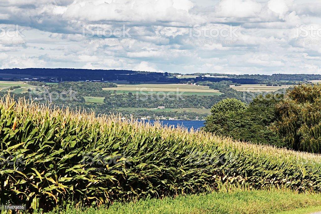 View Across Cayuga Lake royalty-free stock photo