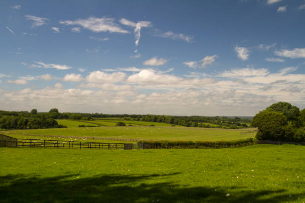 View across rural fields on a sunny day stock photo