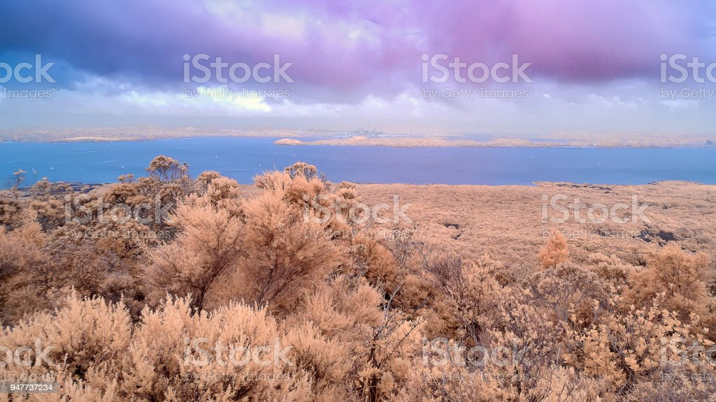 View across the Hauraki gulf from the summit of Rangitoto island stock photo