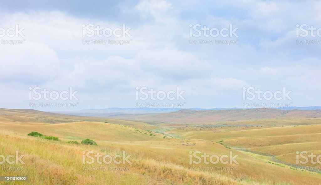 View across the prairie in summer, Montana, USA. stock photo