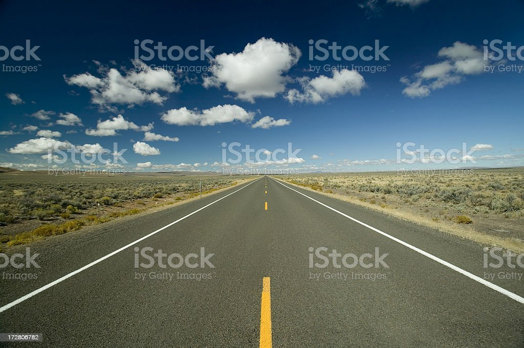 View along a straight asphalted road through desert stock photo