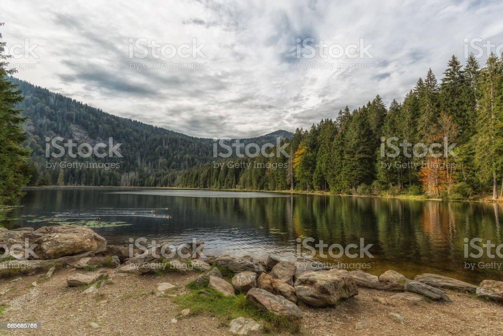 View at the lake great arber, Bavaria stock photo