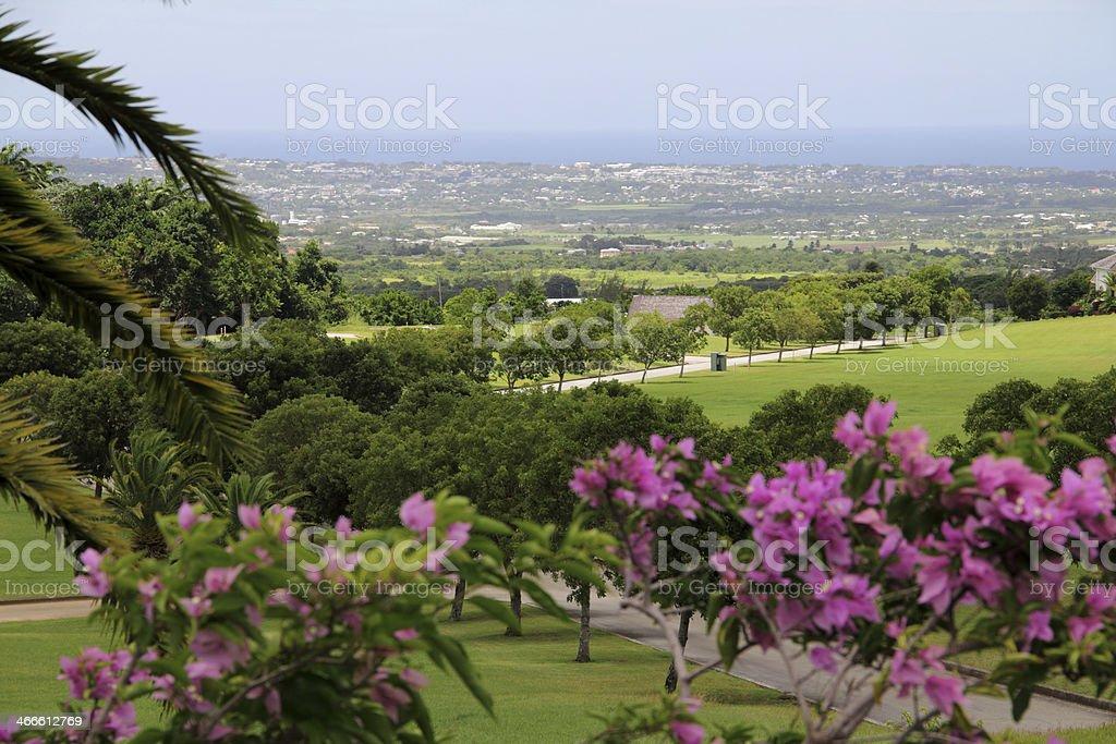 view barbados stock photo