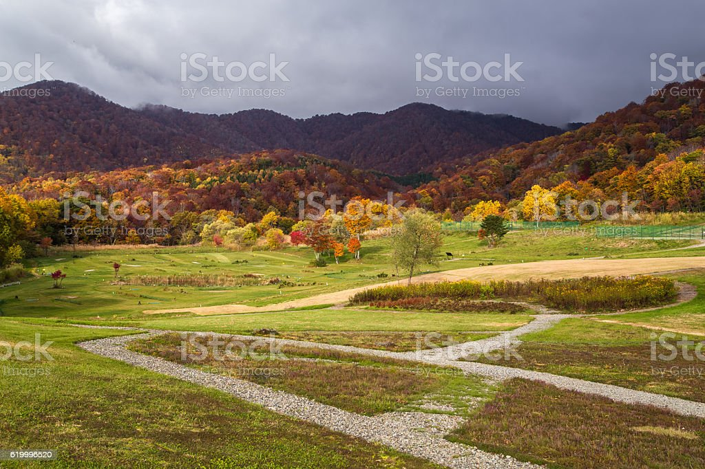 View Beautiful Autumn , Japan stock photo