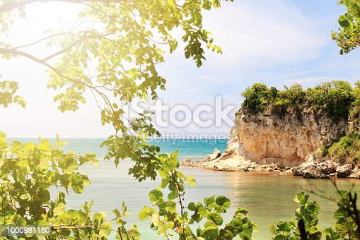 istock View behind from the tropical coastal tree on sea and rocky island. Focus on background, sunlight effect. 1000981180