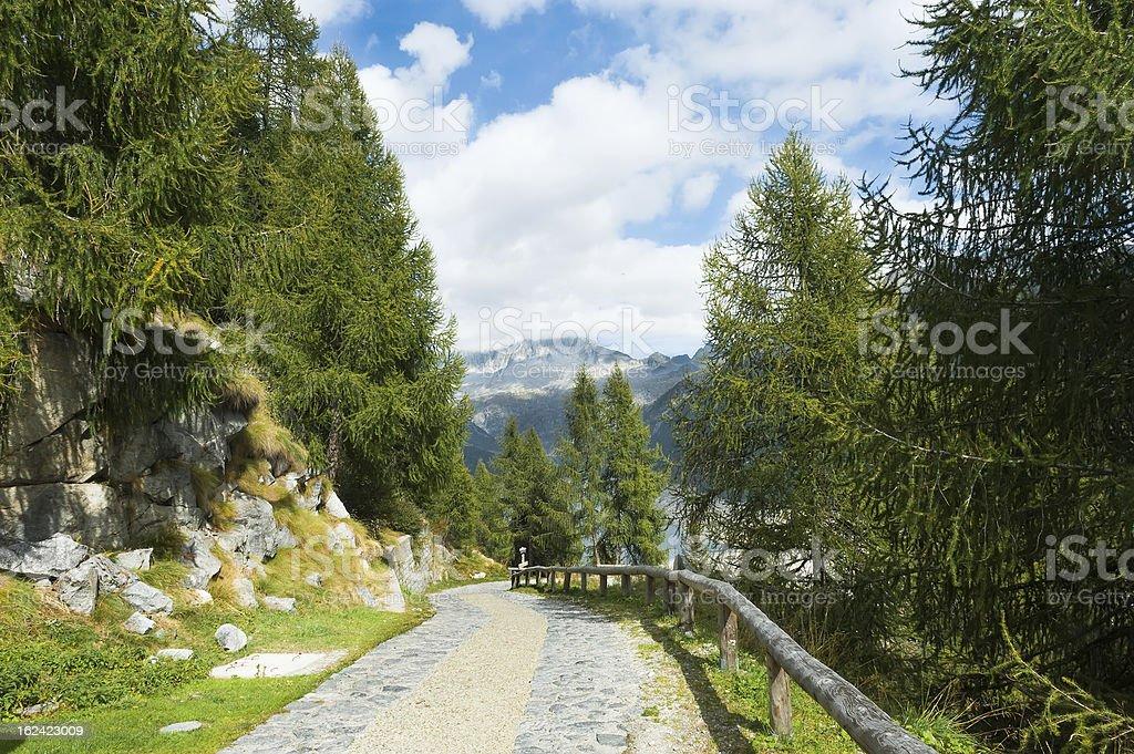 View for mountains and lake Malga Bissina royalty-free stock photo