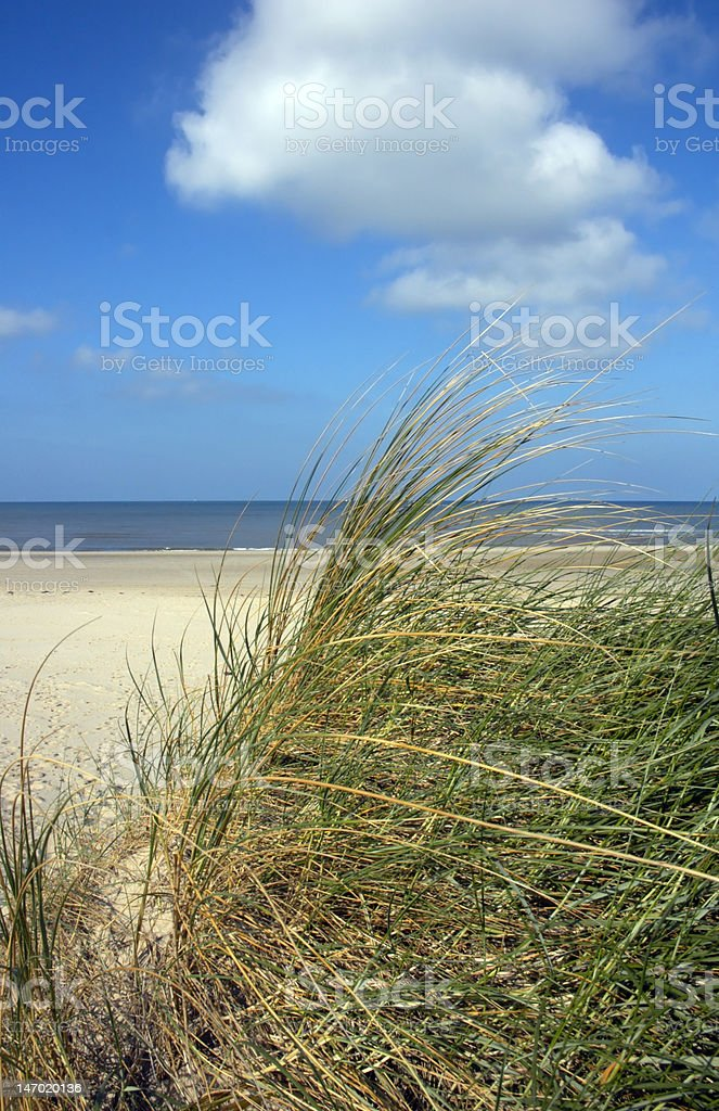 View from a dune over beach and sea stock photo