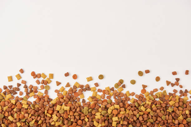 view from above of pile of dog food on white surface - dog food imagens e fotografias de stock