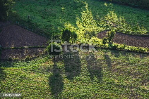 view from above with tree in the countryside asian / Aerial view over mountain road going through forest landscape and agricultural area