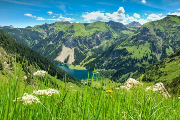 blick von alp auf see und berge. frühjahr sommer - allgäu stock-fotos und bilder