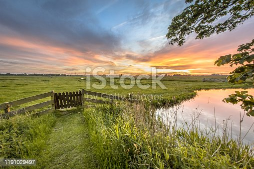 istock View from backyard of dairy farm 1191029497