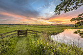 View from backyard of dairy farm over agricultural landscape of dutch countryside in Groningen Netherlands