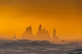 istock View from cape Dyrholaey on Reynisfjara Beach and Reynisdrangar basalt sea stacks, Iceland. Stormy sunrise 1315601591