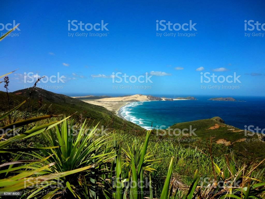 View from Cape Reinga, New Zealand stock photo