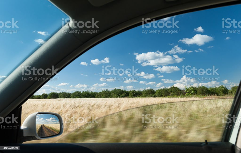 view from car window on wheat field stock photo