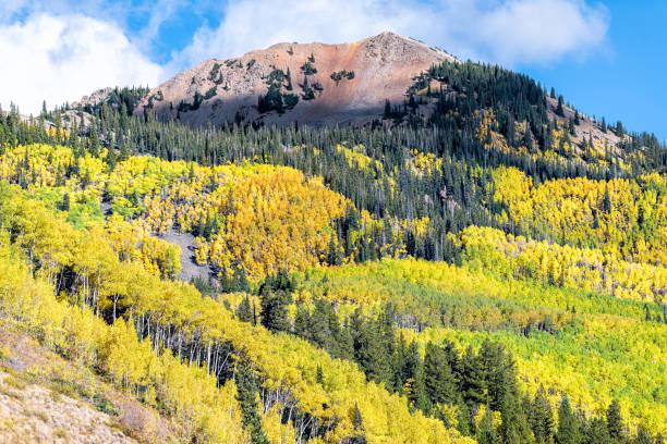 colorado kayalık dağlarda yeşil sarı yaprakları aspen ağaçların castle creek yol görünümü sonbahar sonbahar tepe - independence day stok fotoğraflar ve resimler