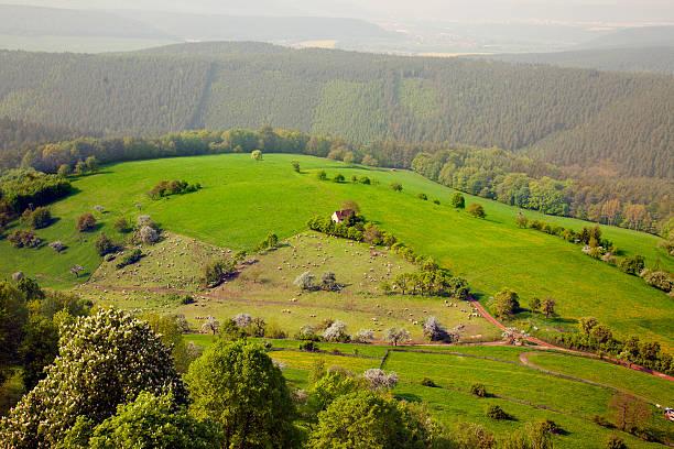 Blick von der Burg Leuchtenburg – Foto