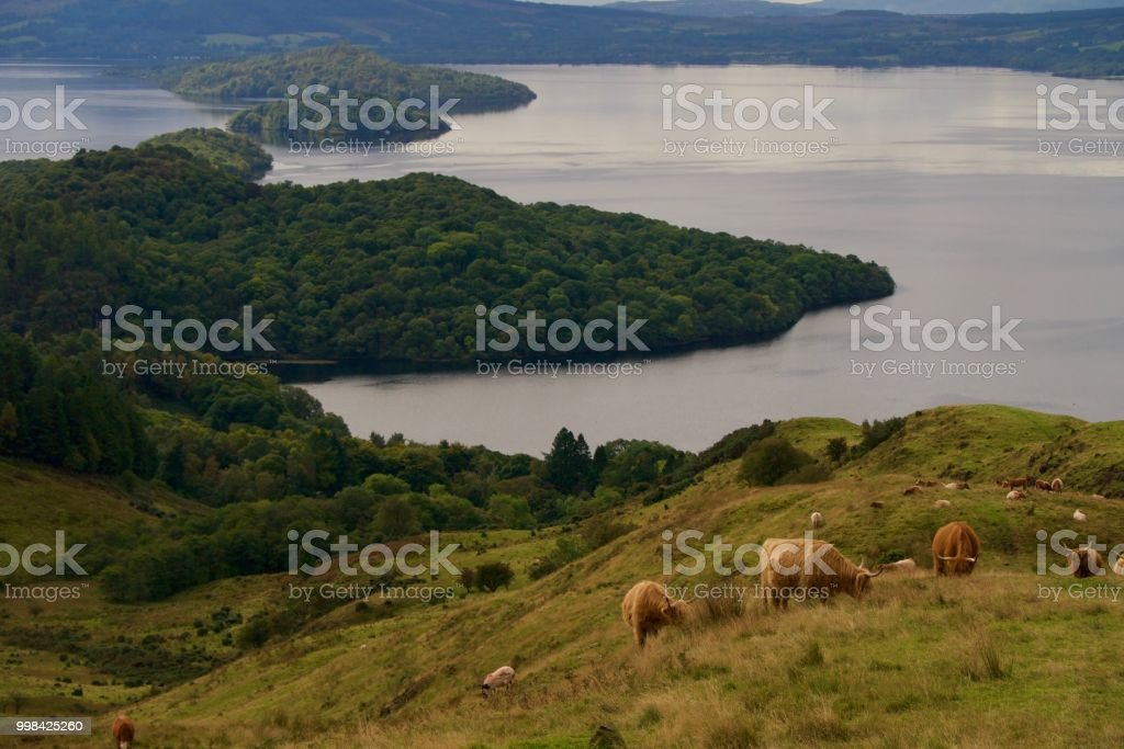 View from Conic Hill of Loch Lomond stock photo