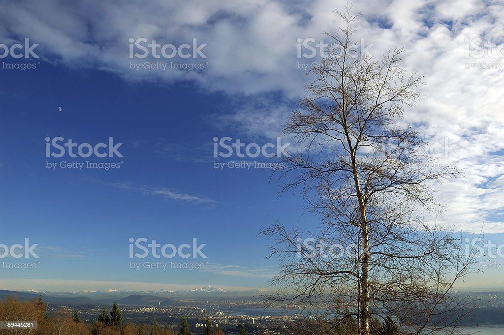 Ansicht von cypress mountain Lizenzfreies stock-foto