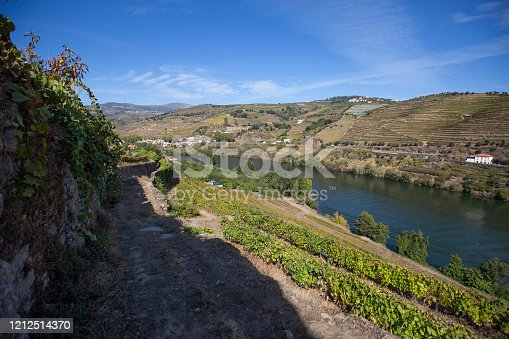 View of the terraced vineyards near Regua in the Douro Valley , Portugal; Concept for travel in Portugal and most beautiful places