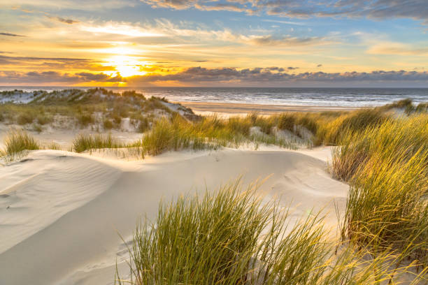 View from dune top over North Sea stock photo