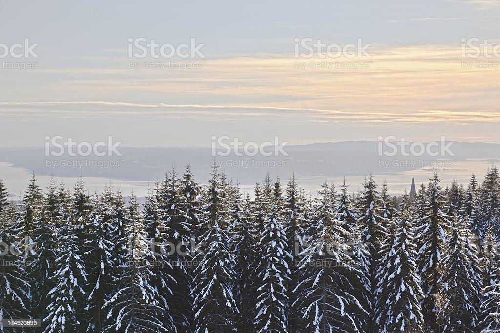 View from Holmenkollen. stock photo