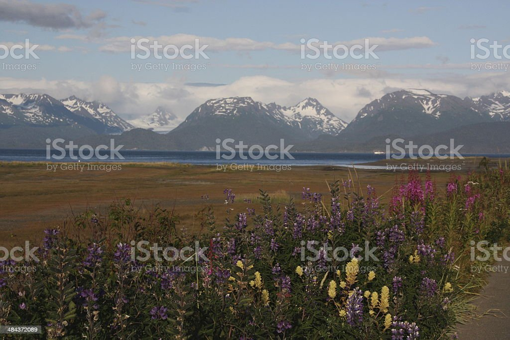 View from Homer Peninsula - Alaska stock photo