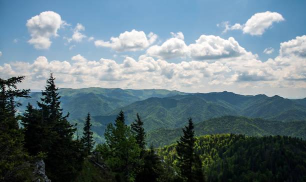 슬로바키아 의 벨카 파트라 산맥의 루베나 언덕에서 바라볼 수 있습니다. - 벨리카 파트라 뉴스 사진 이미지