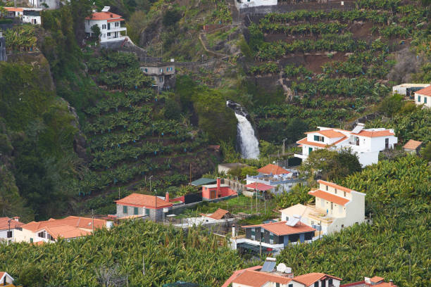 View from Miradouro da Torre viewpoint of a village in Madeira with a waterfall View from Miradouro da Torre viewpoint of a village in Madeira with a waterfall ilha da madeira stock pictures, royalty-free photos & images