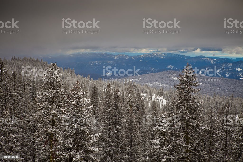 View from Mount Shasta royalty-free stock photo