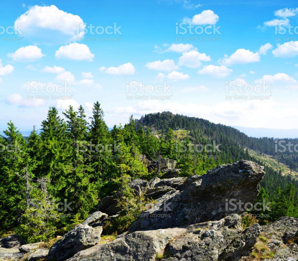 Blick vom Berg Osser Klein. Bayerischer Wald, Deutschland. – Foto