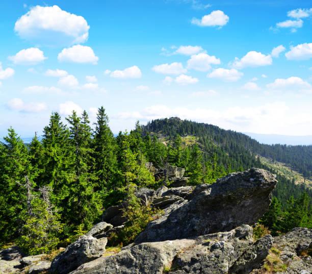 visa från bergets topp klein osser. bayerska skogen, tyskland. - bayerischer wald bildbanksfoton och bilder