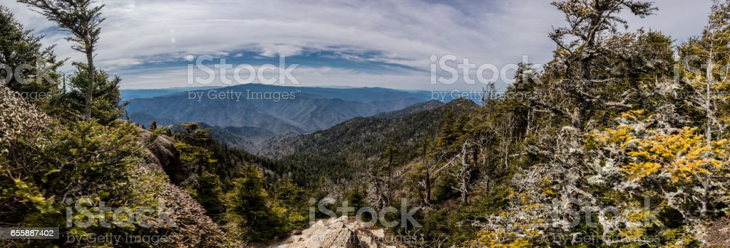 View from Mt LeConte Pano stock photo