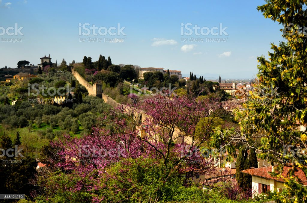 view from Piazzale Michelangelo in Florence with flowering trees stock photo
