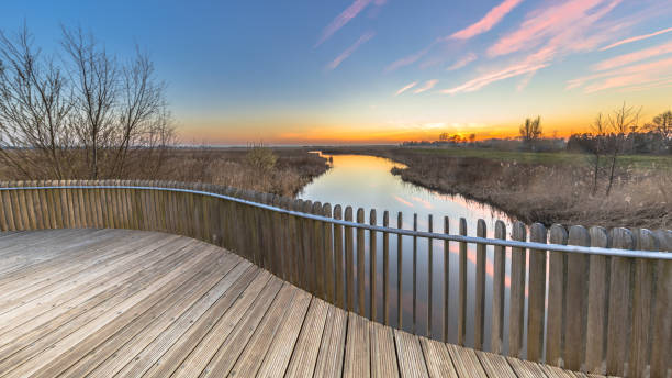 View from Planking balustrade over swamp at sunset stock photo