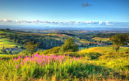 Quantock Hills