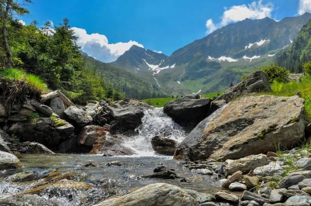 루마니아 카르파티아 산맥- 산 정상 및 강 계곡에서 보기 - 카르파티아 산맥 뉴스 사진 이미지