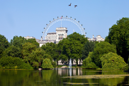 The beautiful view from St. James's Park in London.