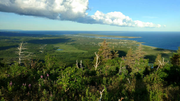 View from the Acadian Trail in Cape Breton, Nova Scotia stock photo