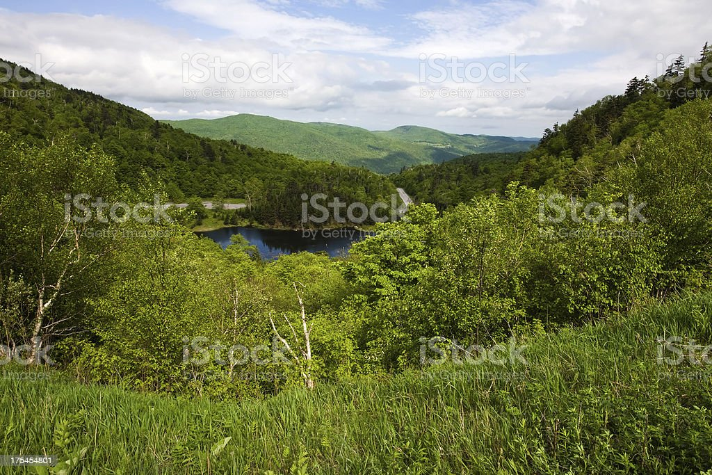 View from the Appalachian  Gap stock photo