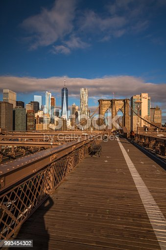 496266816 istock photo View from the Brooklyn Bridge 993454302