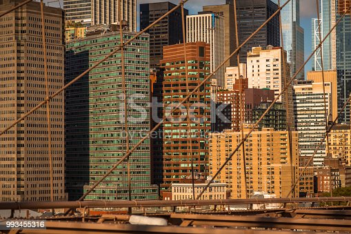 496266816 istock photo View from the Brooklyn Bridge 993455316